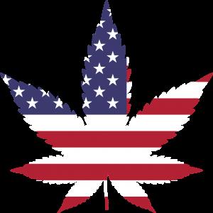 federalism, federal government, marijuana legalization, marijuana legislation, legal weed, mj, weed, marijuana
